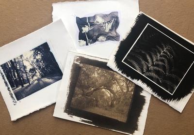 Alternative Process Images courtesy Donna Cosentino©